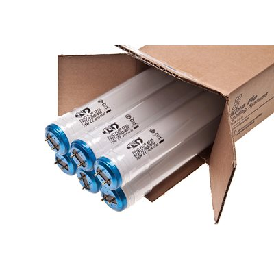 Kino Flo 242-K55-S / 6P 2Ft 800Ma KF55 Safety-Coated Pack Of 6 Tubes.